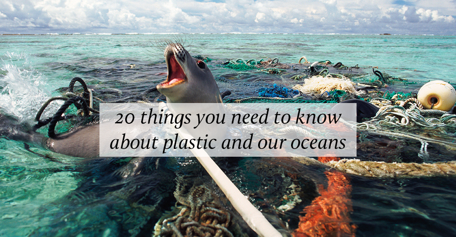 Plastic and our oceans